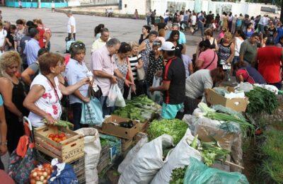 Trabajadores rurales reclamarán con un verdurazo en todo el país por una ley de acceso a la tierra